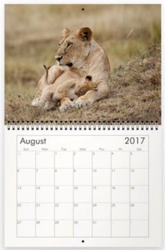 NJ Wight's 2017 calendar Little Lions