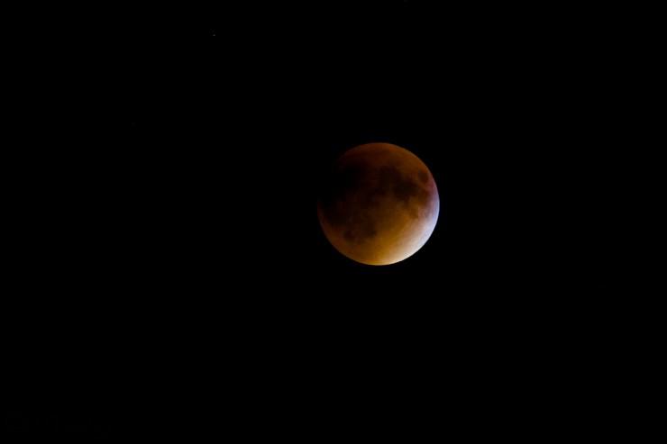 blood_moon_njwight