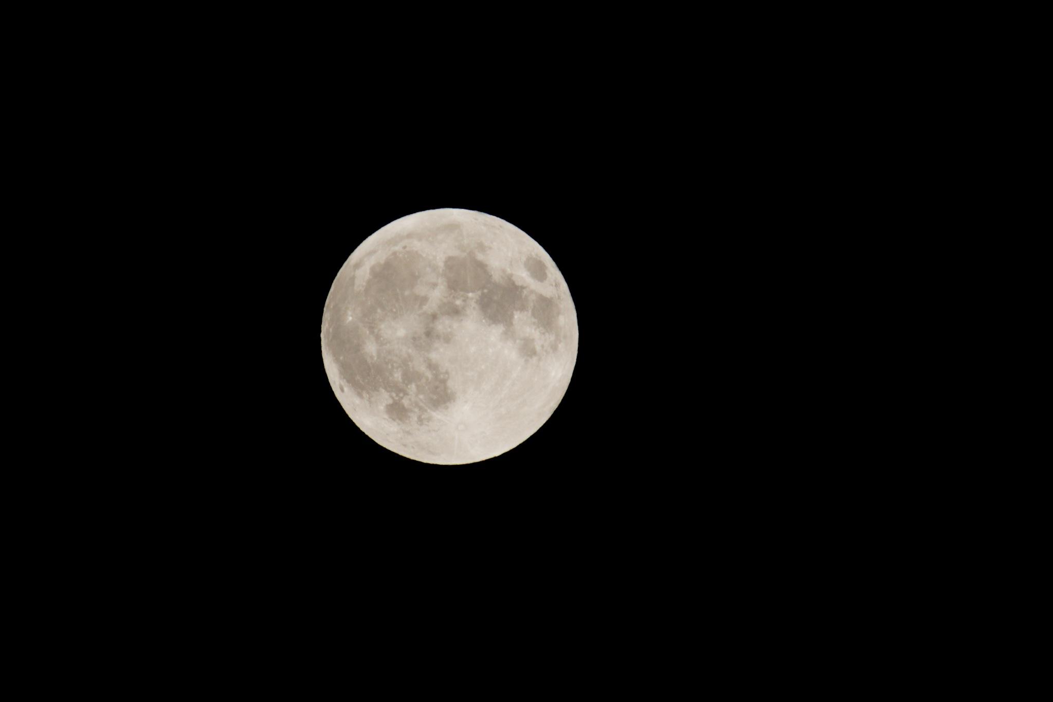 full_moon_njwight